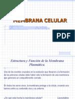 7 Clase Membranas y Endomembranas
