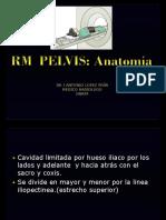 Pelvis -ANATOMIA