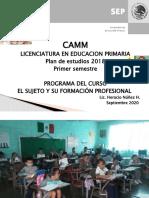 Presentation el maestro y su formacion docente 2020