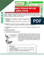 Funciones-Vitales-de-Los-Seres-Vivos-para-Tercero-de-Primaria.pdf