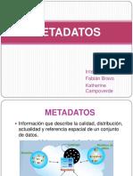 metadatos.pdf