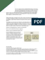 Conceptos Hirstoria de las ideas polititcas.docx