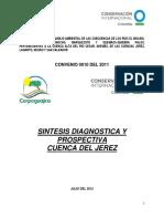 SINTESIS DIAGNOSTICA Y PROSPECTIVA JEREZ