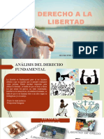LIBERTAD DIAPOS (1)