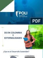 3. DS EN COLOMBIA Y EXTERNALIDADES.pdf