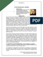 12 CULTURA ORGANIZACIONAL SCHEIN(1)