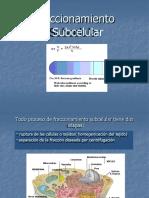 Fraccionamiento_Subcelular (2).pptx