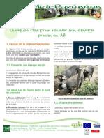 Porc2-Dossier-Quelques-clA-s-p