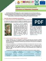 FTC-Ananas-PF