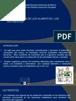 3. COMPONENTES DE LOS ALIMENTOS