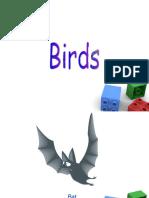 birds-090730031331-phpapp02