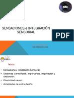 1.SENSACIONES E INTEGRACI+ôN SENSORIAL.pdf