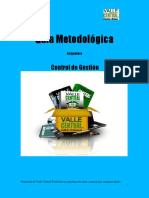 Guia_Metodologica_Control_de_Gestion