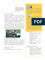 FUNDASES poster.docx
