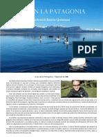 Libro Aves de la Patagonia version resumida-comprimido