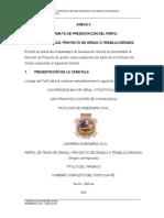 (3) ANEXO II Formato perfil 2020 (1).docx