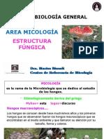MICRO GRAL-1º Clase-Estructura Fúngica-2020