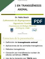 48-Bosch-Transgenesis-V_Jorn_2014.pdf