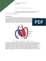ECG  Heart Sounds Student Protocol E GUÍA.pdf