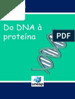 Do DNA à Proteína