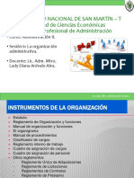 INSTRUMENTOS DE LA ORGANIZACION