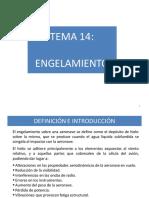 TEMA 14, v130515.pdf