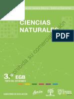 3egb-CCNN-F2 (1)