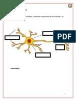 BIOLOGIA 8° III.pdf