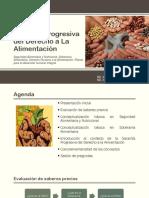 Garantía progresiva del Derecho a La Alimentación