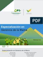 MERCADEO-ESPECIALIZACIÓN GERENCIA DE LA MARCA (2).pptx
