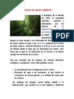 CUIDADO DEL MEDIO AMBIENTE (2)