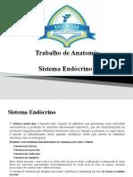 Trabalho de Anatomia.pptx
