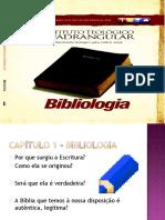 BIBLIOLOGIA CAP 1.pptx