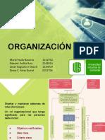 Proceso Administrativo. Organización.pdf