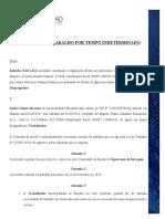 CONTRATO DE TRABALHO -KULORHA NAD- ANDRE MACAMO