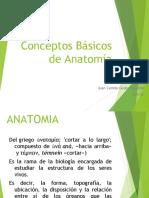 Conceptos Básicos de Anatomía.ppt