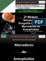 MARCADORES DE ANEUPLOIDIAS.pdf