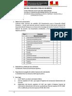 BASES CAS VIRTUALIZADAS v4 CAS N°168-2020.pdf