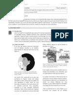CUARTO GRADO F3 S 3 4 Y 5.pdf