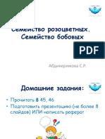 Семейства розоцветных и бобовых.pptx