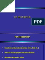 Nucléole