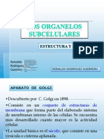 9. Organelos subcelulares