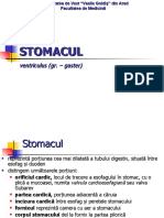 Stomacul