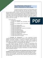 Princípios Constitucionais e Valores da U.E.