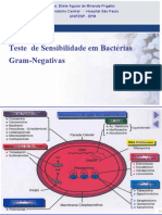 teste_ sensibilidade_bacterias_gram_negativas_eliete (1).ppt