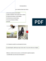 COMPRENSION LECTORA TEXTO DESCRIPTIVO.docx