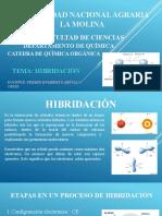 1S. Hibridación (1).pptx