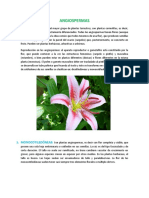 ANGIOSPERMAS botanica