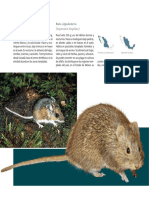Atlas Flora y Fauna 2