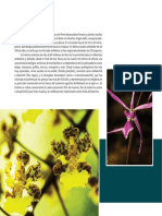 Atlas Flora y Fauna 5